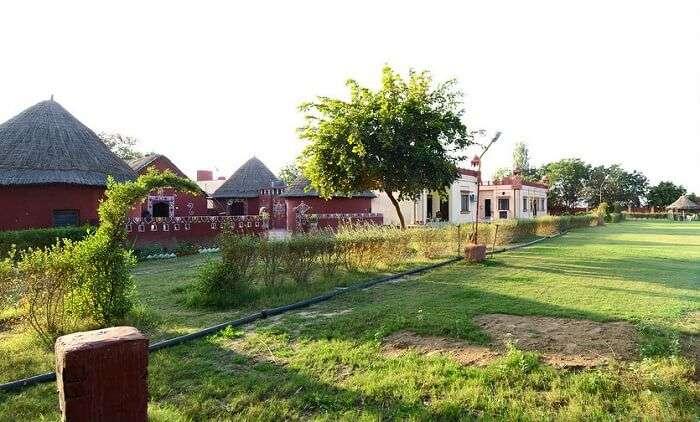 balaji resort