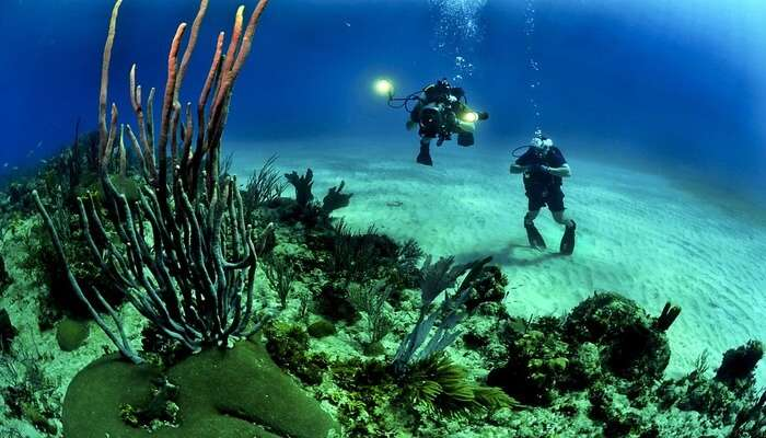 diving in colombo