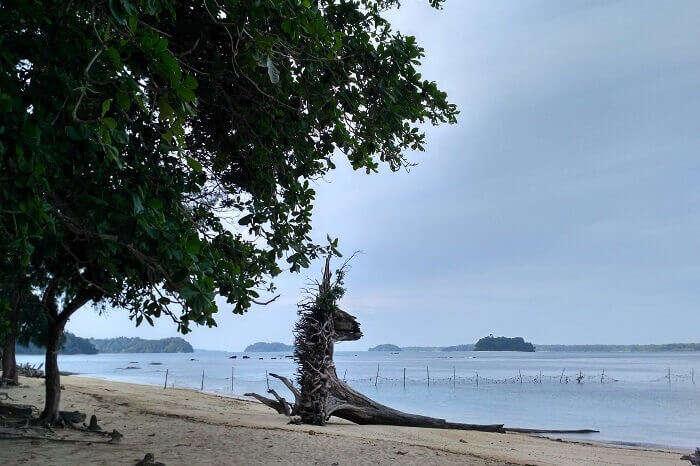 The beautiful Wandoor Beach in Port blair