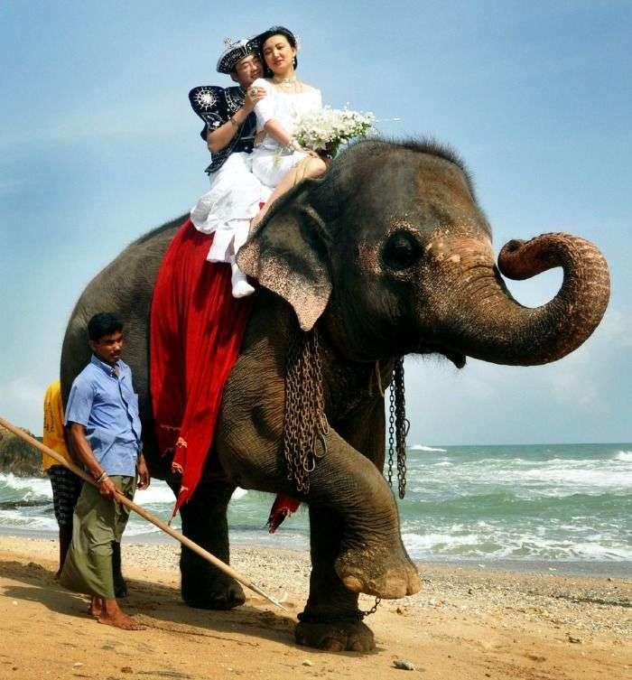 Sri Lanka - an ideal location for striking wedding celebrations