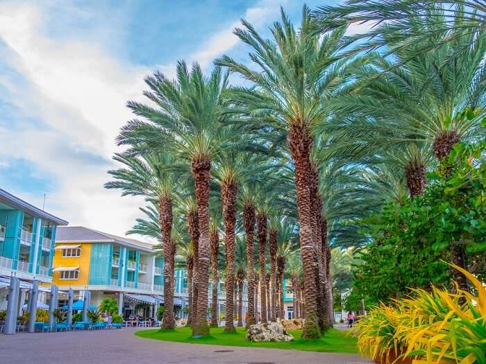 shutterstock-576334504-kw-030617-The Crescent in Camana Bay on Grand Cayman in the Caribbean Cayman Islands