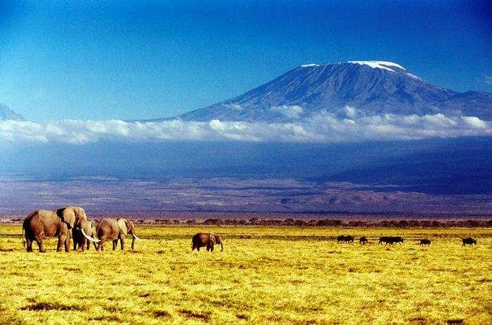 Enjoy holidaying and trekking at Mount Kilimanjaro