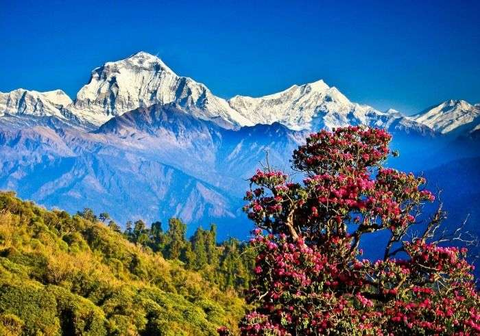 Scenic views, peacefully spiritual atmosphere and fresh air in Pokhra Nepal