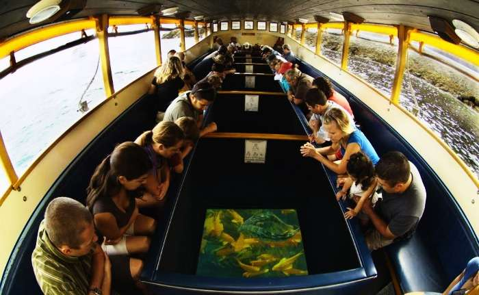 The unique Glass Bottom Cruise in Andaman Islands