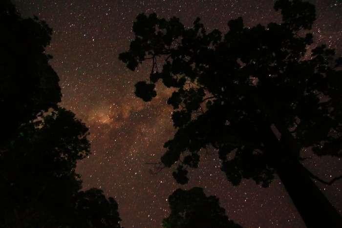 Glittering night sky in Coorg