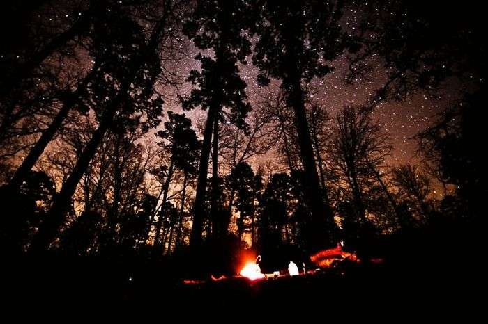 Stargazing, camping and bonfire in Kausani