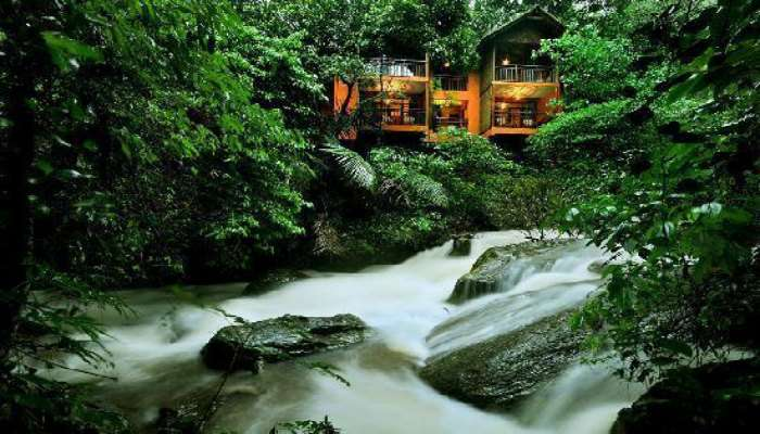 The gorgeous views of Vythiri Resort in Kerala which features a child friendly treehouse too