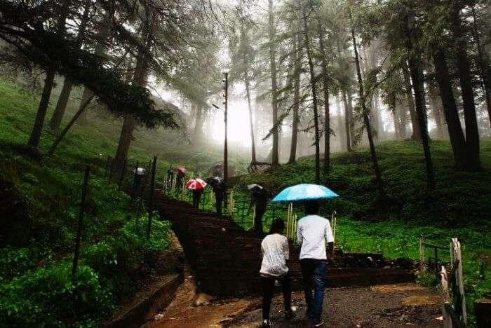Jakhoo hills is one of the best places to visit in Shimla