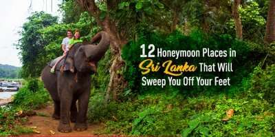 A couple on an elephant safari in Sri Lanka