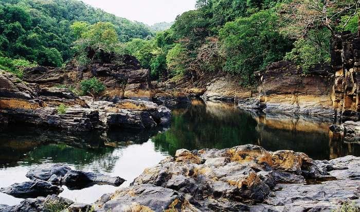 A lake in Cotigao Wildlife Sanctuary