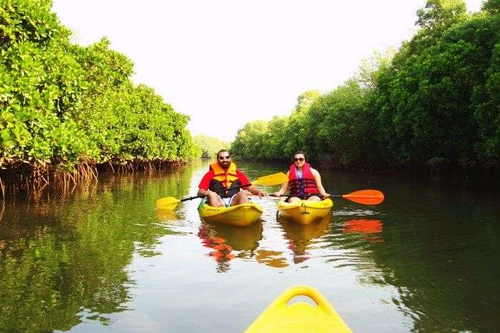 A couple Kayaking in the backwaters of Goa