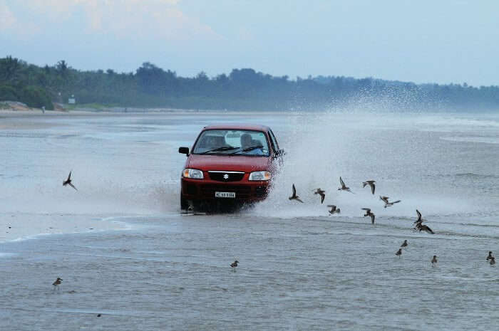The only drive-in beach in India, Muzhappilangad Beach in Kerala