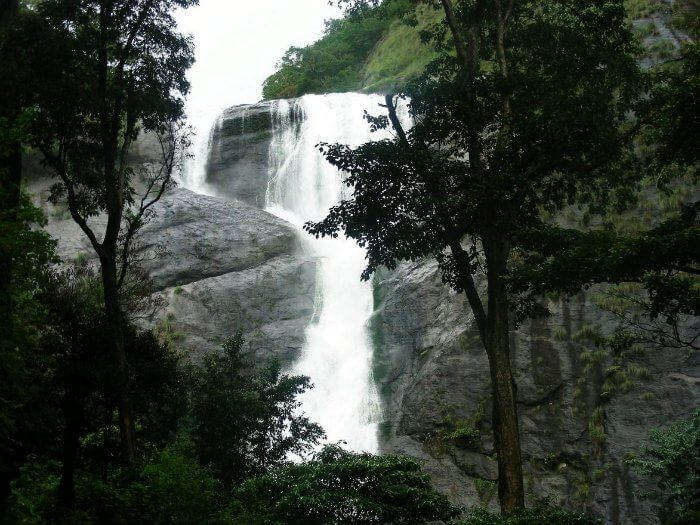 The milky stream of Palaruvi is the best waterfall in Kerala serving as a natural pool for tourists