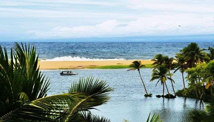 The estuary near Poovar beach in Kerala