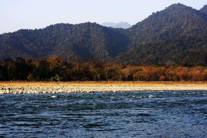 The manas river of Manas National park