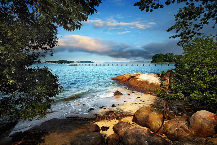 Chek Jawa is the most serene of the places to visit in Singapore for free