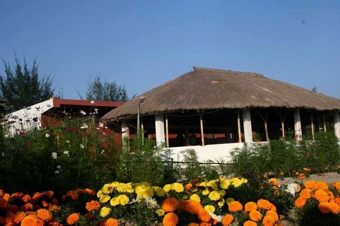 A view of a hut and garden at Sunderbans Gateway Resort