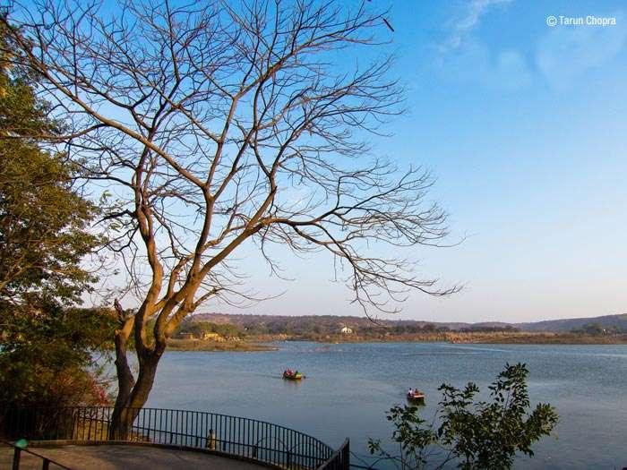 The expanse of Damdama Lake in Haryana
