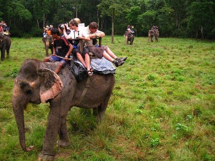 Tourists enjoy elephant safari at Chitwan in Nepal