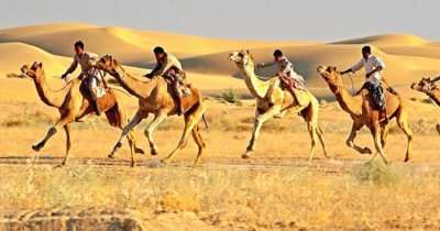 Camel safari at the Sam Sand dunes