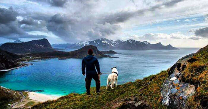 Dog on a vacation with a guy