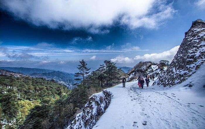 Trekking at Sandakphu, Darjeeling