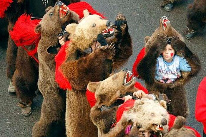 Bear dancing in Romania