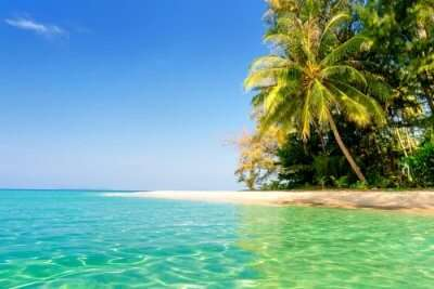 Honeymoon In Fiji