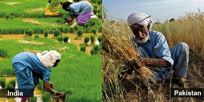 The fertile plains at both the countries are fit to sustain us