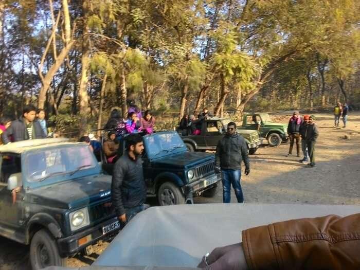 jeeps preparing to leave for the wildlife safari at the Jim Corbett National Park