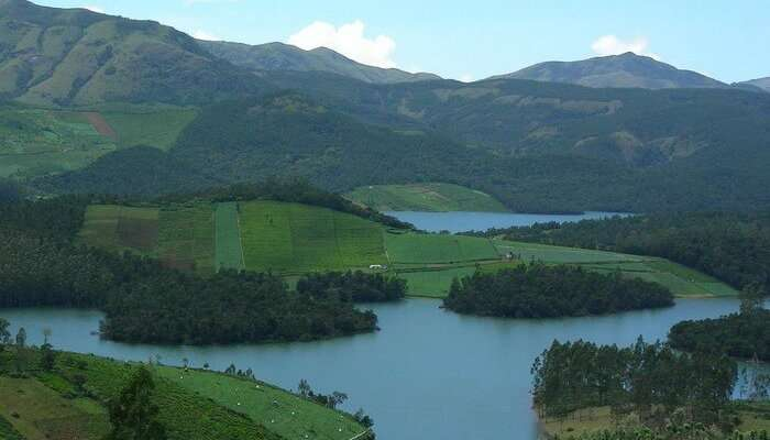 Scenic views of the lush greenery in Coonoor