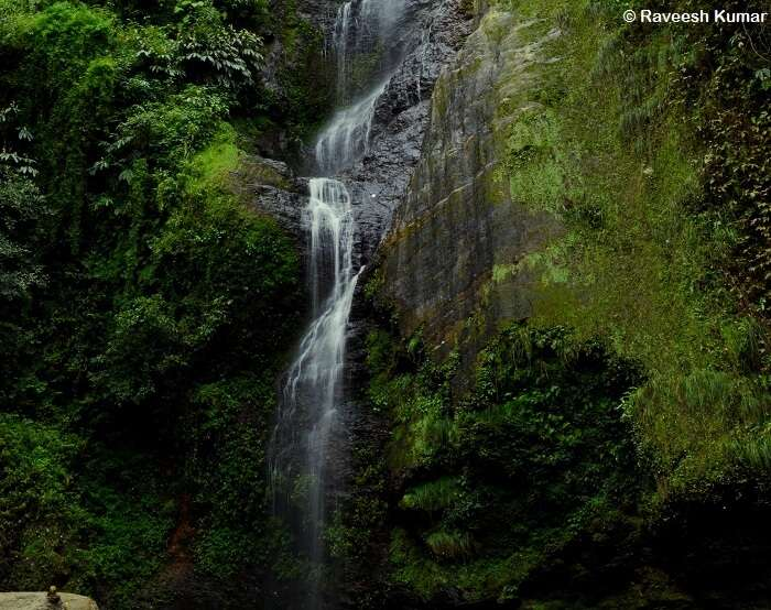 The gorgeous Chadwick waterfall is located in close proximity to Shimla