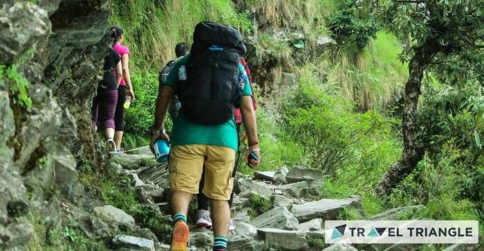 Trekking in Triund