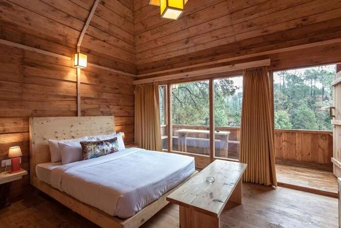 room view of the tree house resort