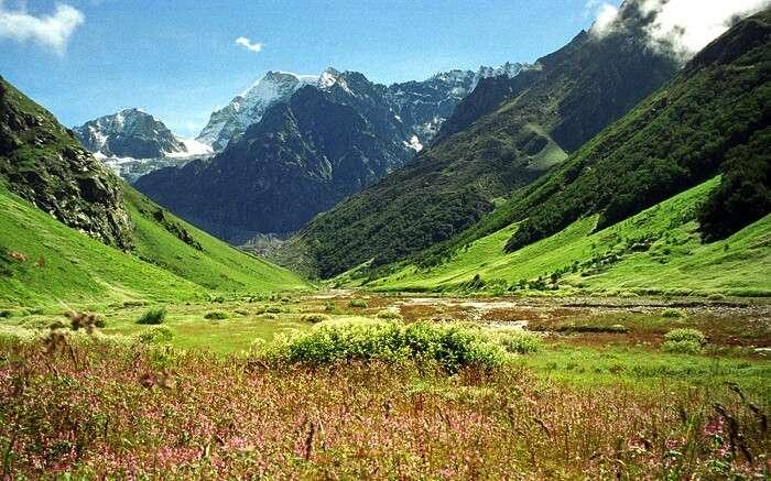 The lush valley of Dekhradun