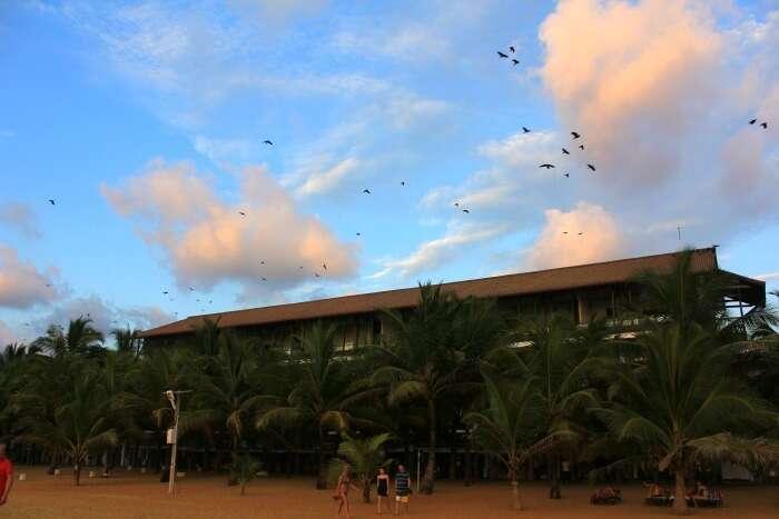 My hotel at Negombo