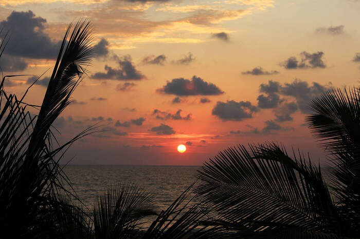 Beautiful sunset in Negombo