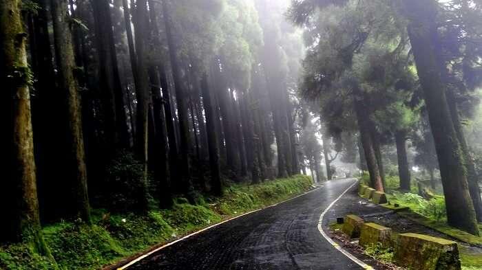 Darjeeling roads