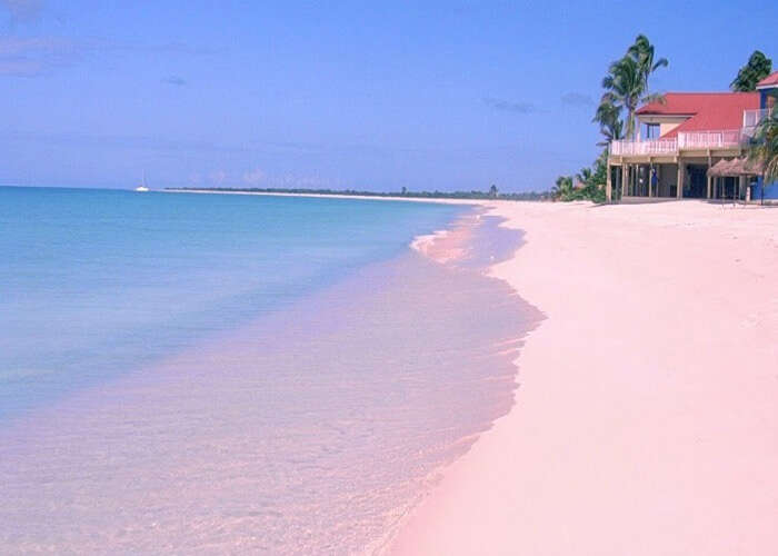 Amazing view of the pink sands
