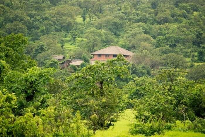 Farm Of Happiness is nestled in the jungle of Ratnagiri in Maharashtra