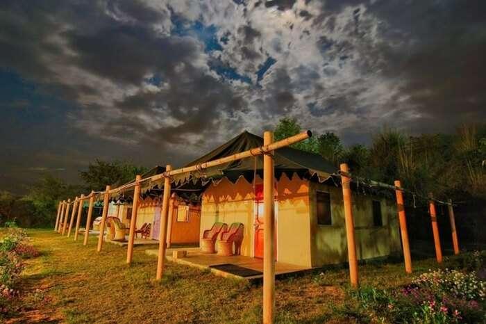 Luxury tents at Prakriti Farms