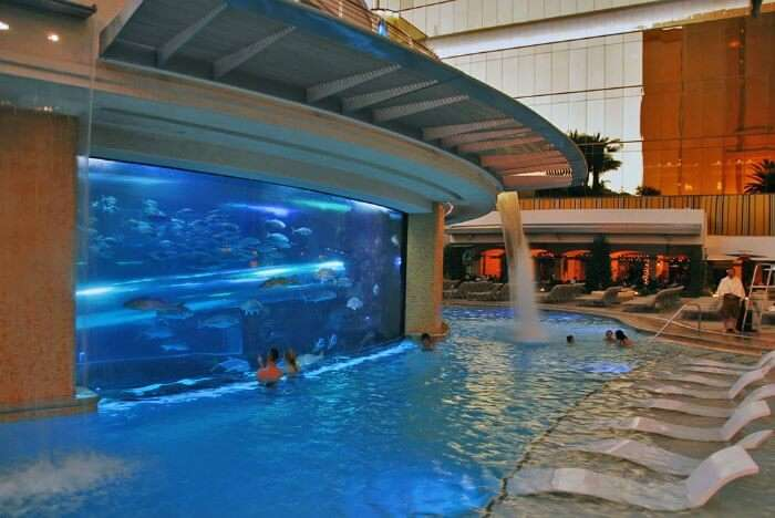 Pool at the Golden Nugget in Las Vegas