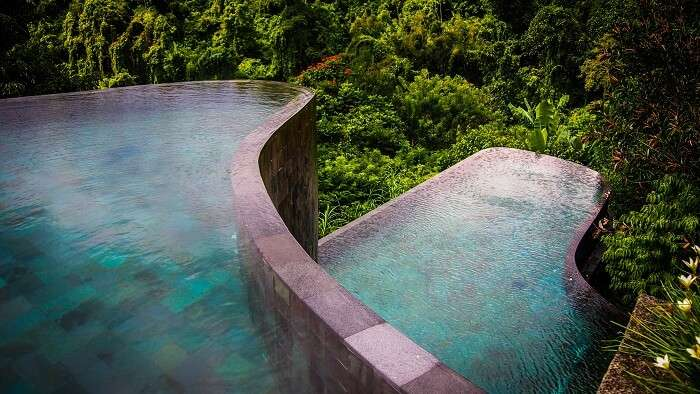 Pool in the background of greenery at Ubud Hanging Gardens Pool Bali