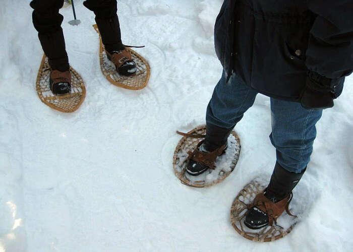 Take pleasure in walking on packed snow