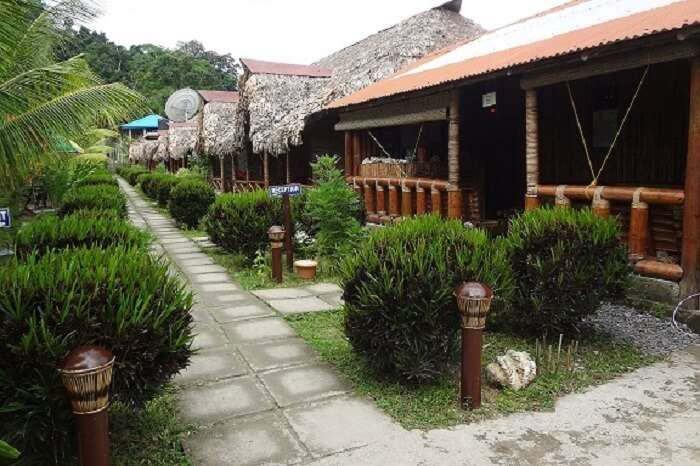 The luxurious cottages at the Blue Bird Resort in Havelock
