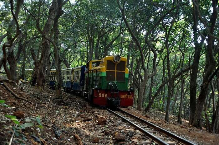 The Matheran Toy Train rambles through the forests in Maharashtra