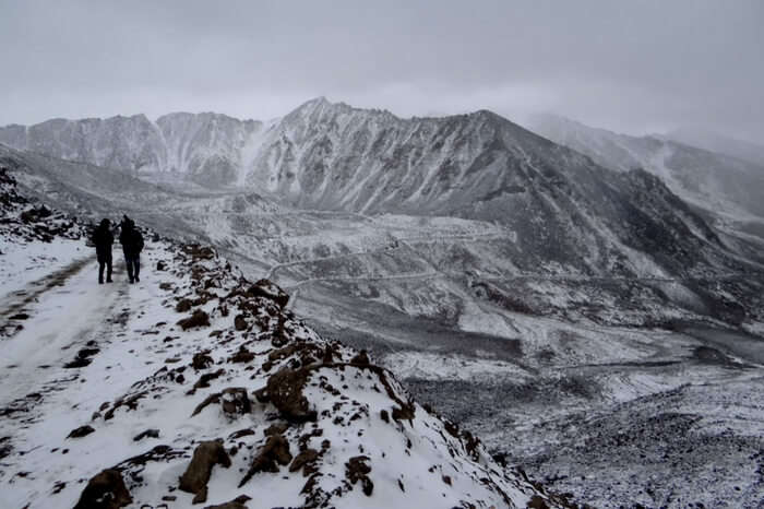 Hemis National Park in Ladakh covered with snow