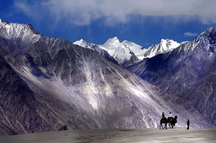Adorable Nubra valley in winter
