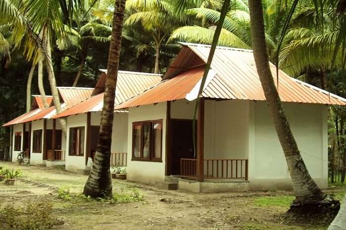 Numerous cottages lined up at the Cross Bill Beach Resort in Havelock