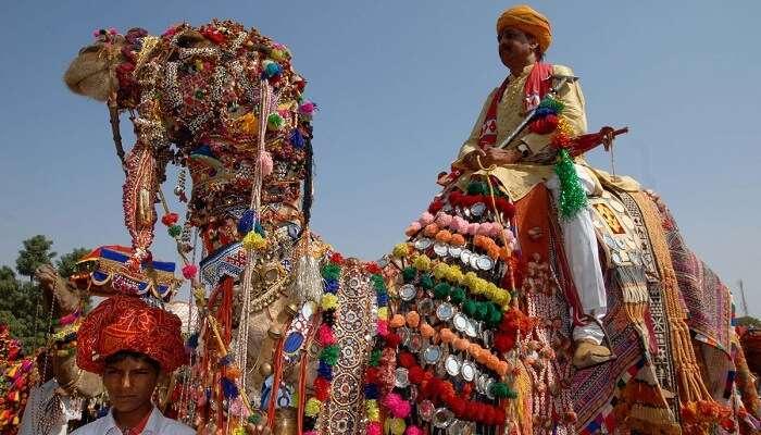 A local rides a camel during the Matsya Festival
